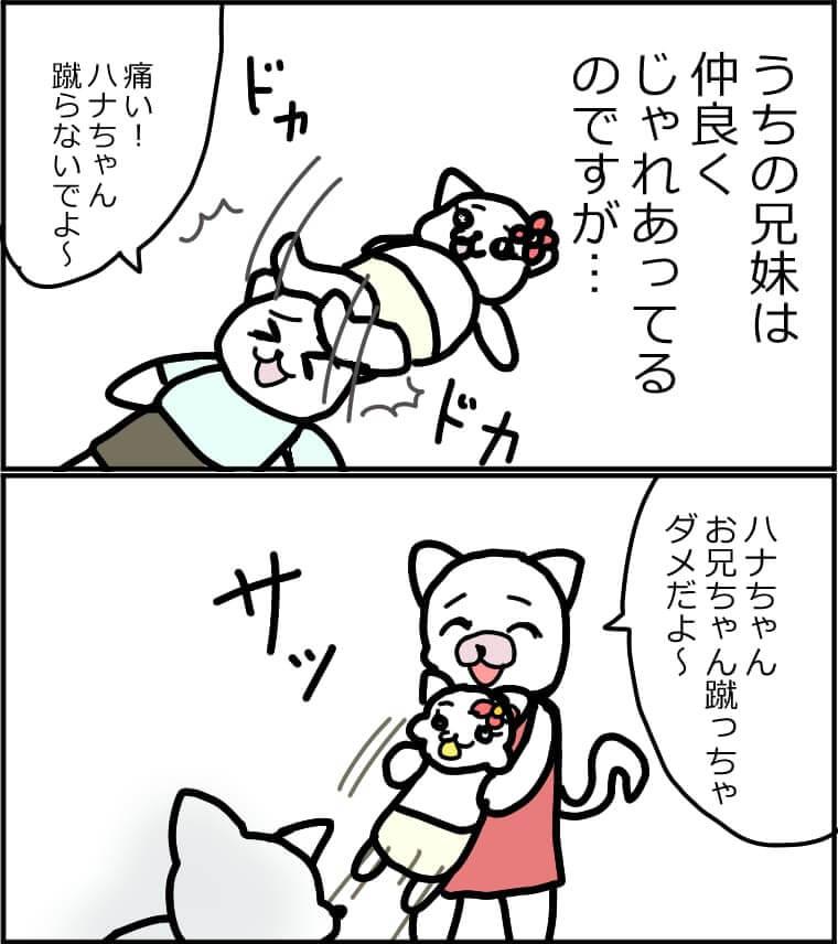 兄弟 育児漫画